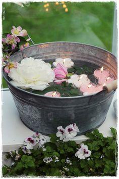 zinc and fleurs / watering cans, etc, X ღɱɧღ ||