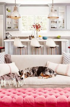 Feminine inspired living room and kitchen with light gray cabinets, pale sofa, pink tufted ottoman, cool hanging pendants and cute doggie