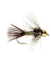Trout will eat up this wet fly in an instant.