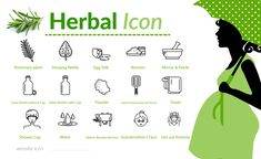 Herbal Set Icon. If You need some icon... lets start new project