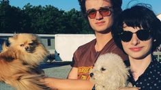 Joe Keery and Finn Wolfhard from Stranger Things + dogs