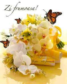 Auto Follower, Shavua Tov, Place Cards, Bee, Place Card Holders, Plants, Summer, Girlfriends, Honey Bees