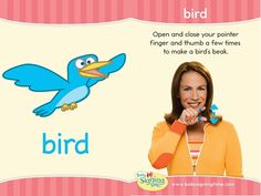 Learn how to sign bird in ASL (American Sign Language). Your fingers are like a bird's beak. Let's see bird. Sign Language Basics, Sign Language Book, Sign Language Phrases, Sign Language Interpreter, Learn Sign Language, American Sign Language, Teaching Kids, Kids Learning, Libra