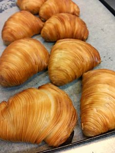 Pietro de Felice Pastry Chef: How to Make Curly Neapolitan Sfogliatelle – Tutors … - Modern French Dessert Recipes, Italian Desserts, Italian Recipes, Sfogliatelle Recipe, My Favorite Food, Favorite Recipes, Italian Pastries, Puff Pastry Recipes, Italian Cookies