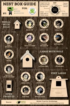 Nest Box Guide – Which Wild Birds Use Nest Boxes? Wild Bird Nest Box Guide A garden for birdsBumblebees in the gardenNesting boxes for birds rich Homemade Bird Houses, Bird Houses Diy, Homemade Bird Feeders, Bird Nesting Box, Nesting Boxes, Bird House Plans, Bird House Kits, Finch Bird House, Cardinal Bird House