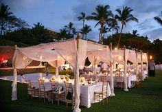 Dining Canopies - How pretty is this!