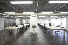 Under the Elevated Office | Leibal