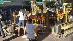 STITCHIT: shrine reopens