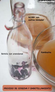 Tibicos para bajar de peso preparacion de cocteles