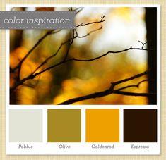 26 Best O Colors Images Color Combinations Color Combos Ideas