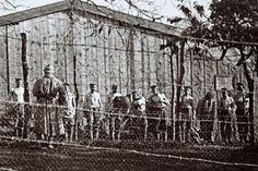 Des soldats allemnds faits prisonniers après la bataille de Verdun.