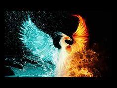 See Phoenix Bird Art Prints at FreeArt. Get Up to 10 Free Phoenix Bird Art Prints! Gallery-Quality Phoenix Bird Art Prints Ship Same Day. Phoenix Images, Phoenix Art, Phoenix Rising, Phoenix Painting, Phoenix Feather, Dark Phoenix, Tattoo Calf, Phenix Tattoo, Tarot By Cecelia