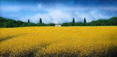 """""""Estate in Toscana"""" di MassimilianoNocchi"""