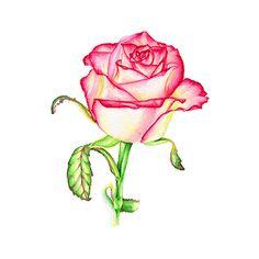 Flower Rose Art Print Watercolor Painting от DariyPrintJulia