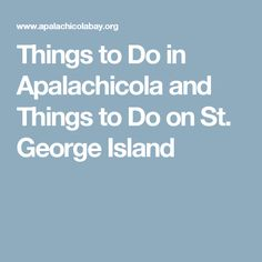 Things to Do in Apalachicola and Things to Do on St. George Island