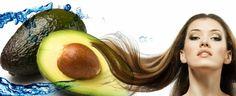 Medizines: Health and Beauty Avocado Oil Benefits - A Tonic For Healthy Hair Mask For Oily Skin, Skin Care Masks, Avocado Oil Benefits, Hair Secrets, Dry Damaged Hair, Homemade Face Masks, Hair Growth Oil, Hair Health, Hair Oil