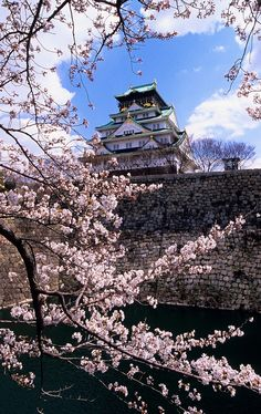 Osaka Castle, Osaka, Japan: Osaka Castle, a place of beauty and the location of the major battles that resulted in the rise and fall of the shogun!
