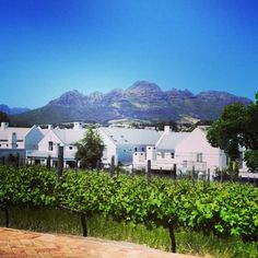A Summer's day at Kleine Zalze Over The Years, Beautiful Pictures, Environment, Mansions, House Styles, Places, Instagram Posts, Summer, Summer Time