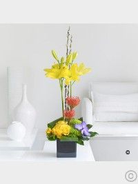 Spring Lily, Rose and Orchid Arrangement - Interflora Best Flower Delivery, Flower Delivery Service, Online Flower Delivery, Ikebana Flower Arrangement, Orchid Arrangements, Valentines Flowers, Mothers Day Flowers, Cut Flowers, Spring Flowers