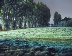 "ART L:  Saatchi Art Artist John Vias; Photography, ""Tracks in Field"" #art"