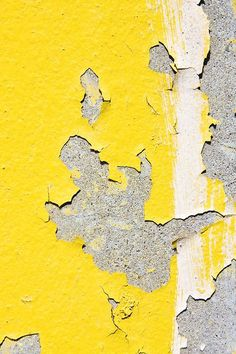 Yellow | Giallo | Jaune | Amarillo | Gul | Geel | Amarelo | イエロー | Colour | Texture | Style | Form | areaofinterest: Michael Chase