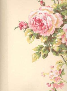 New flowers pink background vintage roses 64 ideas