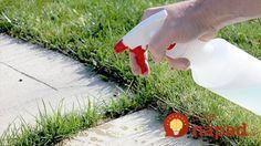 Burina a tráva na chodníku či terase? Pomôže jediná surovina z vašej kuchyne!