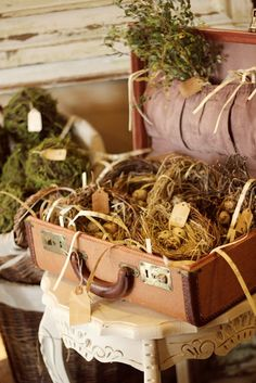 bird nests and suitcase - love it