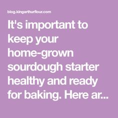 It's important to keep your home-grown sourdough starter healthy and ready for baking. Here are the steps you need for maintaining your sourdough starter. King Arthur Flour, Starters, Bread Recipes, Create Yourself, Baking, Biscotti, Healthy, Blog, Bakken