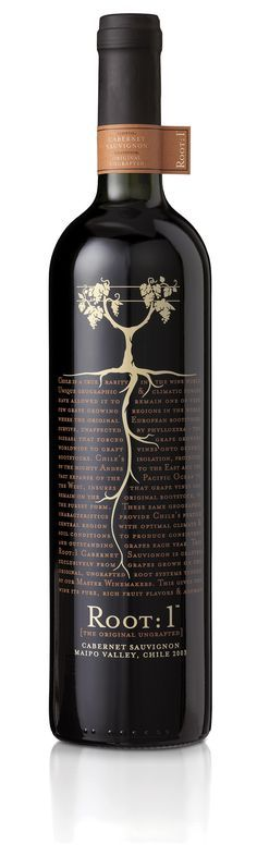 Root: 1 - a Cab originating from Maipo Valley, Chile