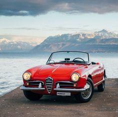 The legendary Alfa Romeo Giulietta Spider Alfa Romeo Giulietta Spider, Alfa Romeo Spider, Alfa Romeo Gtv 2000, Alfa Romeo Cars, 1957 Chevrolet, Chevrolet Chevelle, Luxury Car Brands, Luxury Cars, Peugeot
