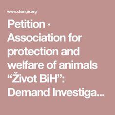 "Petition · Association for protection and welfare of animals ""Život BiH"": Demand Investigation into Horror Shelter in Gladno polje, Sarajevo, Bosnia · Change.org"