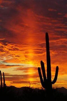pilar de luz - 30 fenômenos naturais que você não vai acreditar que realmente existem