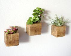 tiestos madera