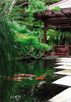 Bassin pour carpes koï Garden Pond Design, Carpe Koi, Zen Style, Garden Waterfall, Natural Swimming Pools, Fish Ponds, Garden Bridge, Habitats, Outdoor Structures