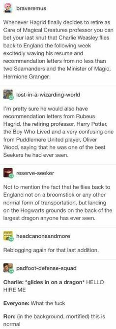 Headcannon Charlie Weasley becomes the next Care of Magical Creatures professor Can the dragen be the one Hagrid had in book Harry Potter Love, Harry Potter Fandom, Harry Potter Universal, Harry Potter Memes, Harry Potter World, Harry Potter Professors, Hogwarts, Slytherin, Must Be A Weasley