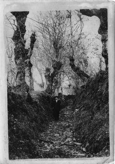 Paisaxe, Lugo. Ca. 1910. Xelatina de prata ao clorobromuro. 18 x 13 cm.
