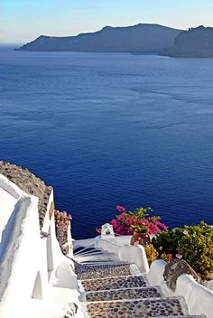 Picture Spot: Caldera Steps in Oia - Santorini Vacation Destinations, Dream Vacations, Places Around The World, Around The Worlds, Beautiful World, Beautiful Places, Places To Travel, Places To Visit, Myconos