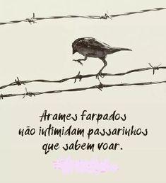 SOLARIS                           : ARAMES FARPADOS - Vida Words Quotes, Life Quotes, Sayings, Eye Illustration, Perfect World, Good Vibes, Life Lessons, Inspirational Quotes, Wisdom