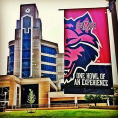 Photo by almcclung • Instagram  Arkansas State University   Dean B Ellis Library