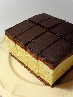 Chocolate and custard Hungarian Desserts, Hungarian Recipes, Layered Desserts, Fun Desserts, Sweets Recipes, Cookie Recipes, Romanian Food, Mini Cheesecakes, Dessert Bars