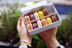"""Jour du Macaron - free macaron in exchange of a small donation that goes to """"Autistes sans frontières"""""""