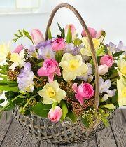Basket Arrangement - Fleurs Amanda