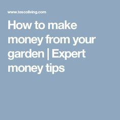 How to make money from your garden | Expert money tips