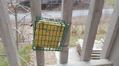 My Patchwork Quilt: PEANUT BUTTER SUET for BIRDS