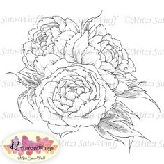 Instant Download - Digital Stamp - Peony - digistamp - Peony Bouquet - Floral Line Art for Cards & Crafts on Etsy, $3.00