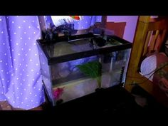 AquaClear 20 - YouTube