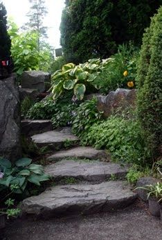 Rock steps. HANDS DOWN a part ofm y dream backyard!!!