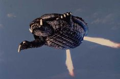 Gamera: 1965 - Gamera awakens by the detonation of an A bomb. It then starts its…