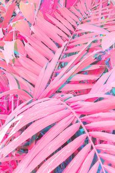 Du haut de ses 21 ans (seulement), Cru Camara est déjà passée maître dans l'art de la photographie. Chacune de ses photos est bien pensée et nous transporte dans son univers coloré aux accents futuristes, principalement dominé par des variations de bleu et de roses. Découverte de son travail : www.lesconfettis.com/cru-camara